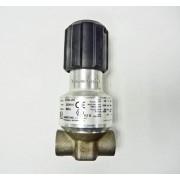 Graco Inc P100-VM /P100VM